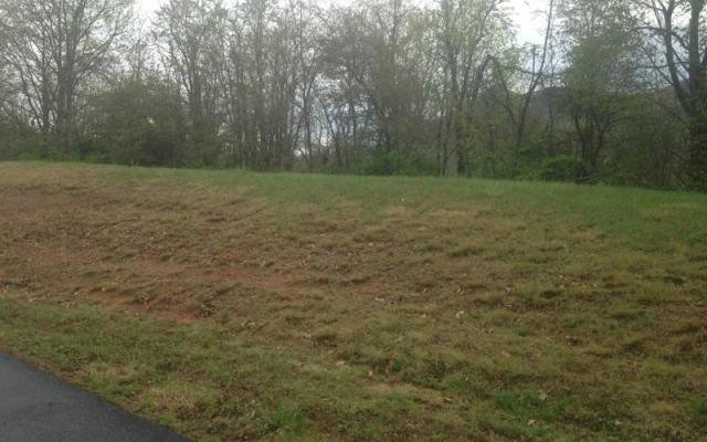 Vacant Lot - Hayesville, NC (photo 1)