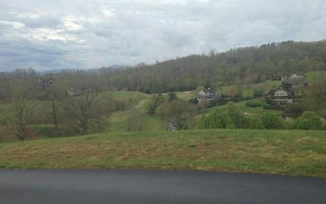 Vacant Lot - Hayesville, NC (photo 4)