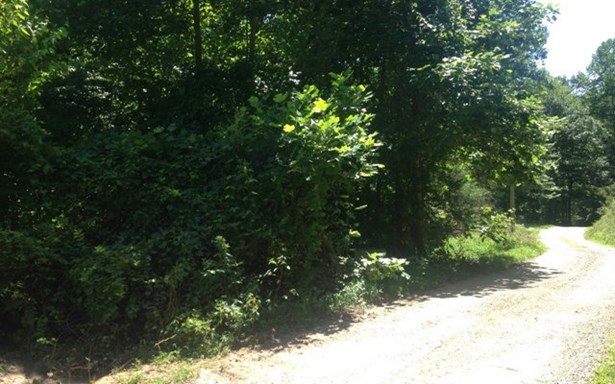 Vacant Lot - Marble, NC (photo 4)