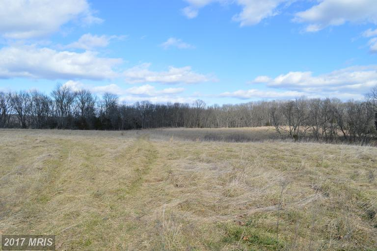 Lot-Land - STRASBURG, VA (photo 4)
