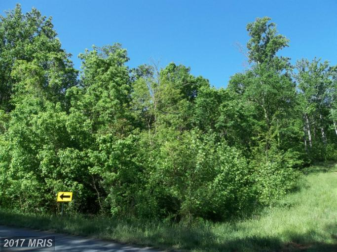 Lot-Land - BENTONVILLE, VA (photo 1)