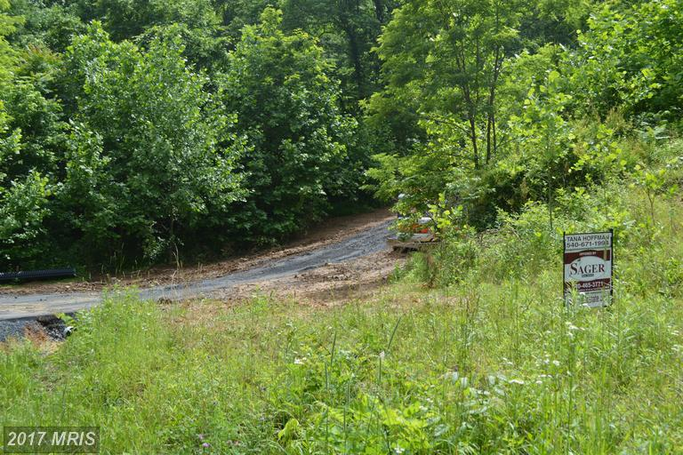 Lot-Land - BENTONVILLE, VA (photo 4)
