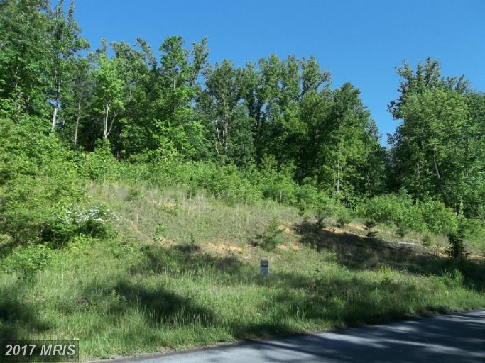 Lot-Land - BENTONVILLE, VA (photo 2)