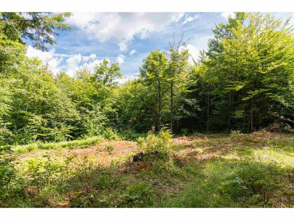89 (lot 5) Wilder Road, Duxbury, VT - USA (photo 1)
