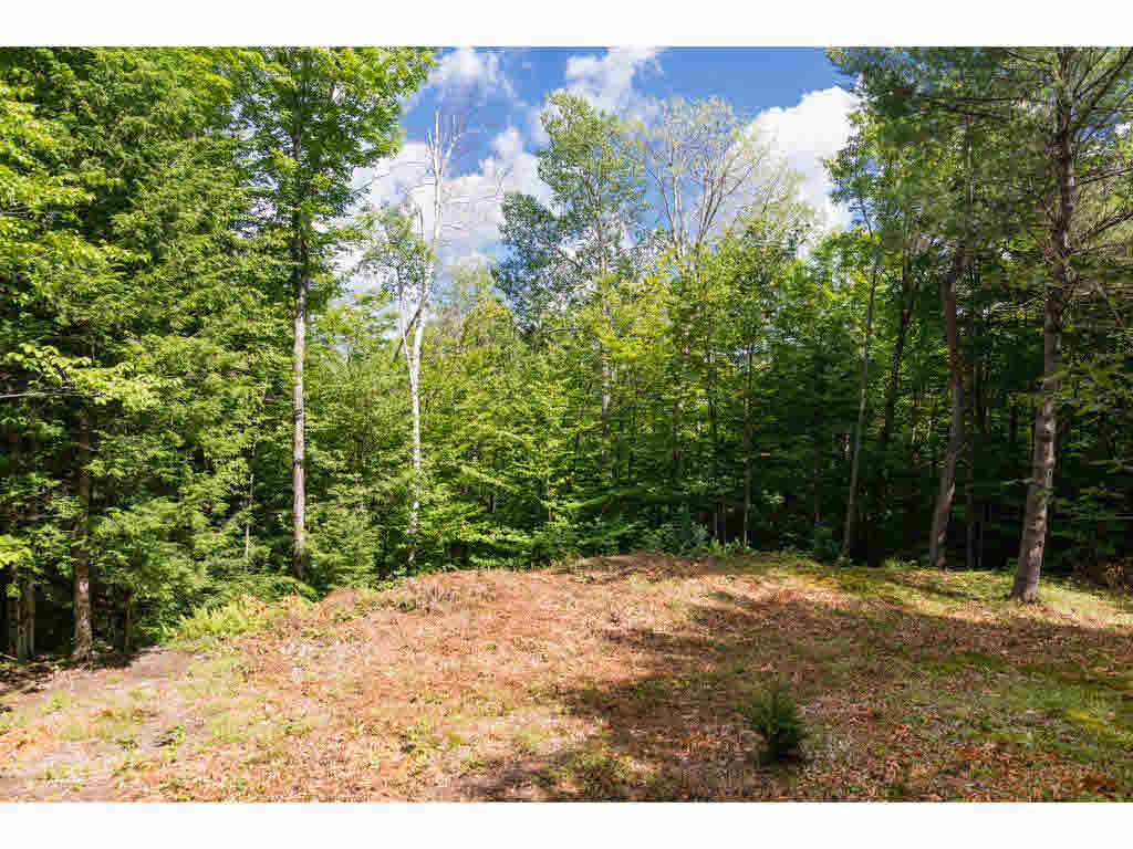 89 (lot 4) Wilder Road, Duxbury, VT - USA (photo 1)