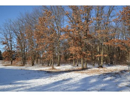 13499 Acacia Avenue Ne, Monticello, MN - USA (photo 4)