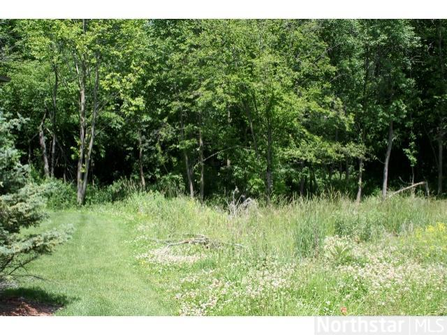 2071 Austrian Pine Lane, Minnetonka, MN - USA (photo 3)