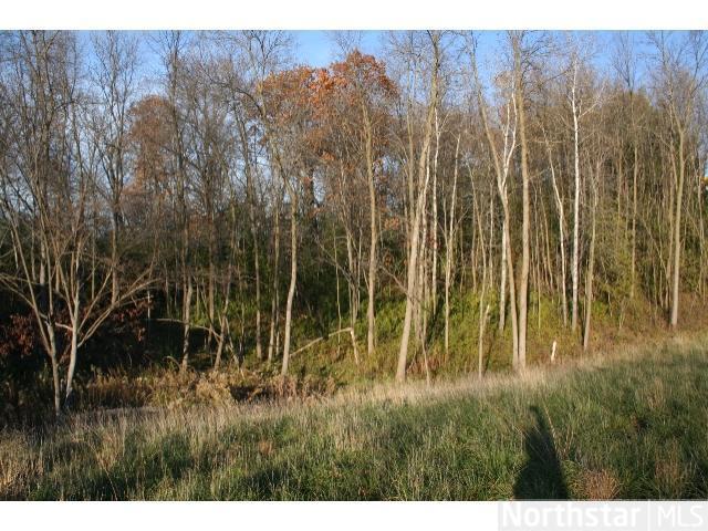 2071 Austrian Pine Lane, Minnetonka, MN - USA (photo 4)
