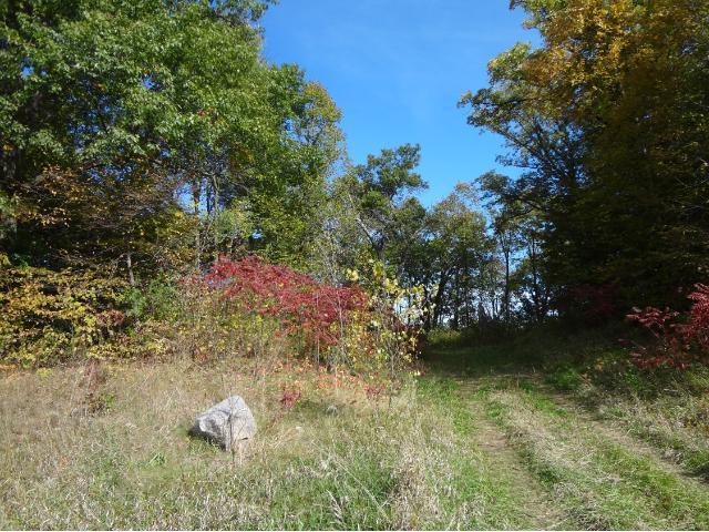 Xxx (l1 B1) County Road 39 Ne, Monticello, MN - USA (photo 5)