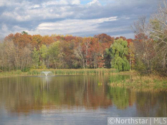 9843 Whistling Valley Road, Lake Elmo, MN - USA (photo 1)