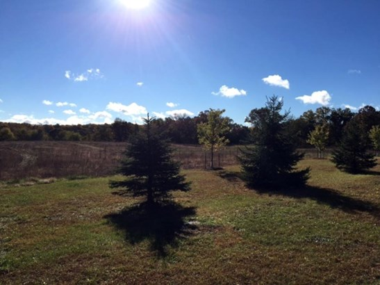 Xxx Loftman Trail, North Branch, MN - USA (photo 1)