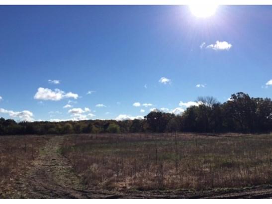 Xxx Loftman Trail, North Branch, MN - USA (photo 2)