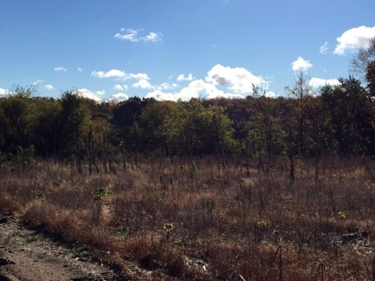 Xxx Loftman Trail, North Branch, MN - USA (photo 3)