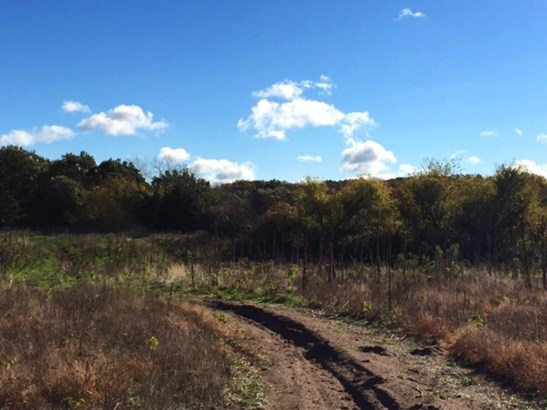 Xxx Loftman Trail, North Branch, MN - USA (photo 4)
