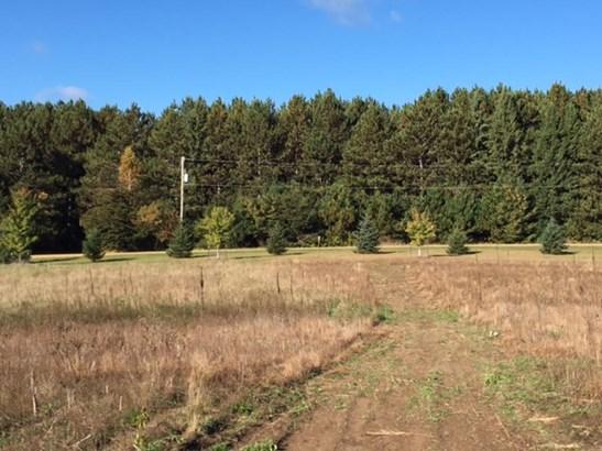 Xxx Loftman Trail, North Branch, MN - USA (photo 5)