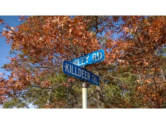 5042 Killdeer Trail, Nisswa, MN - USA (photo 3)