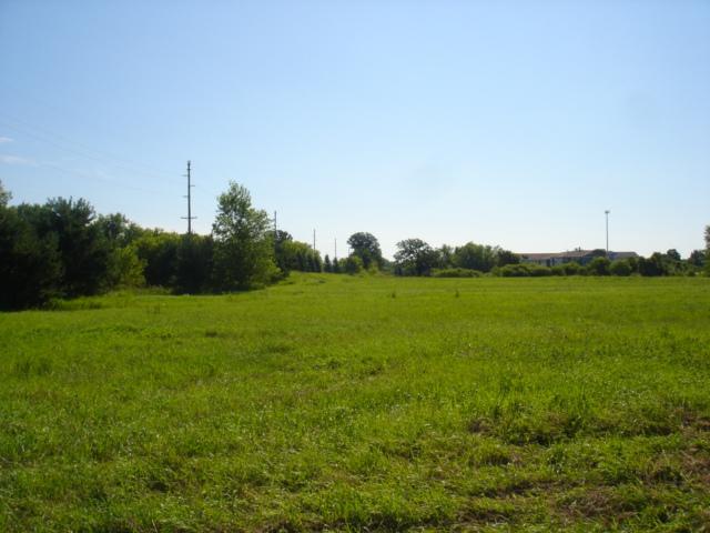X3 Willowbrook Circle, Delano, MN - USA (photo 5)
