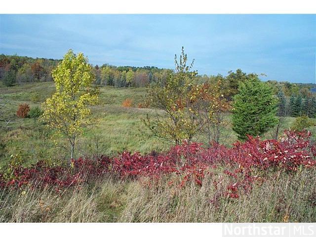 9829 Whistling Valley Road, Lake Elmo, MN - USA (photo 1)