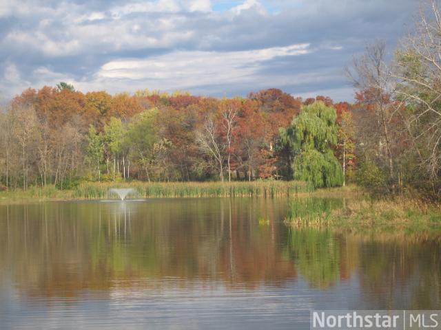 9829 Whistling Valley Road, Lake Elmo, MN - USA (photo 2)