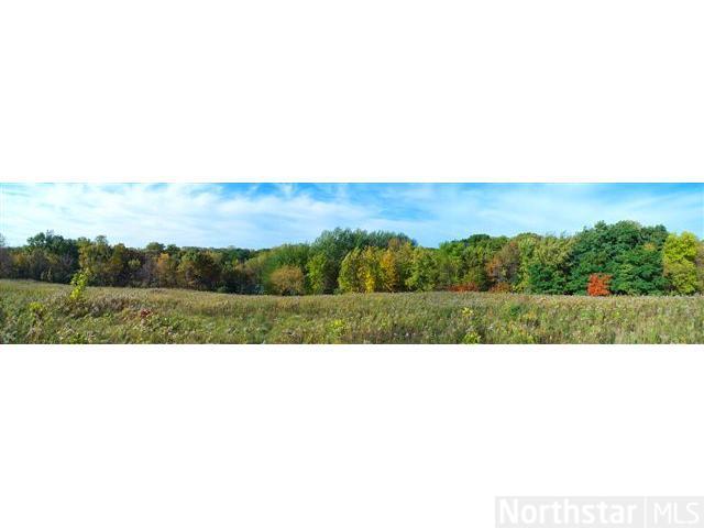 9829 Whistling Valley Road, Lake Elmo, MN - USA (photo 3)