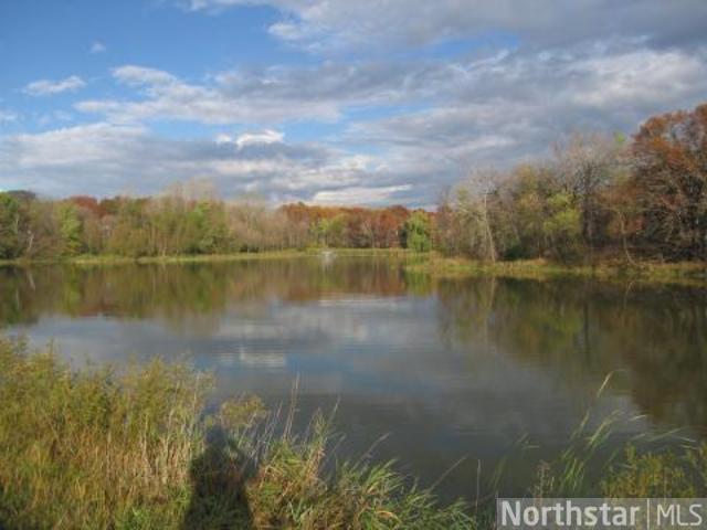 9829 Whistling Valley Road, Lake Elmo, MN - USA (photo 4)