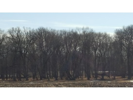 21155 County Road 10, Corcoran, MN - USA (photo 1)