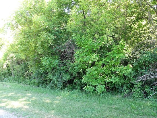 Lot 9 185th Avenue, Hager City, WI - USA (photo 1)