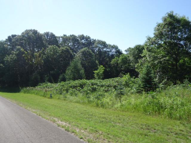Lot 1 845th Street, Hager City, WI - USA (photo 2)