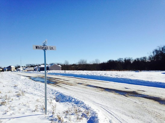 201 Whitetail Lane, Kenyon, MN - USA (photo 3)