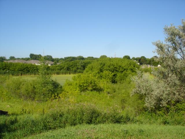X2 Willowbrook Circle, Delano, MN - USA (photo 2)