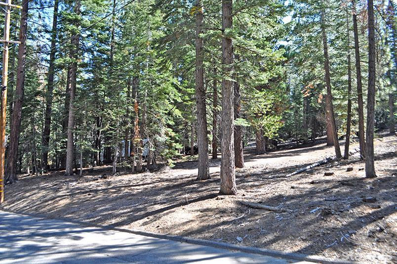 Vacant w/Allocation - South Lake Tahoe, CA (photo 1)
