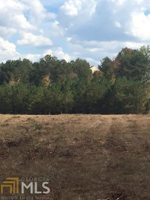 Land Lot - Rome, GA (photo 3)