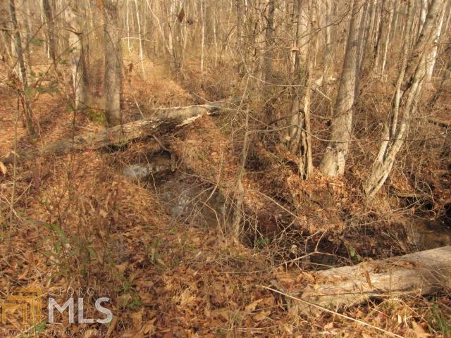 Land Lot - Rockmart, GA (photo 3)