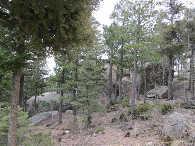 Land - Manitou Springs, CO (photo 1)