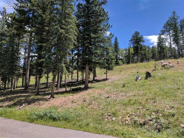 Land - Woodland Park, CO (photo 1)