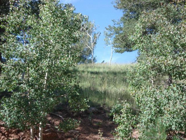 Land - Cripple Creek, CO (photo 1)