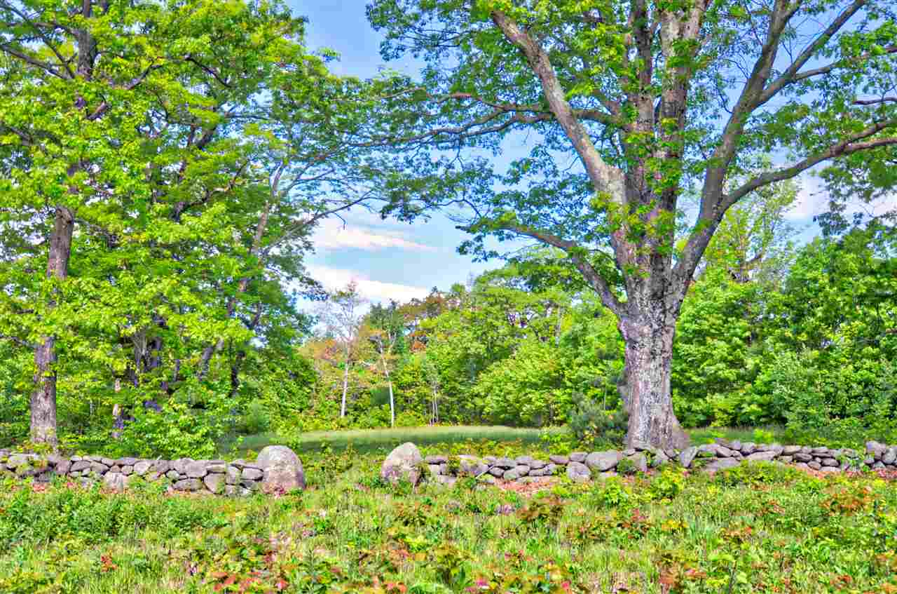 Land - Temple, NH (photo 2)