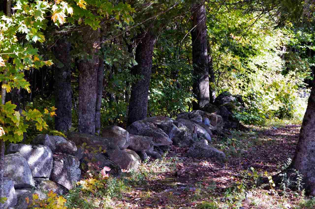Land - Deering, NH (photo 5)