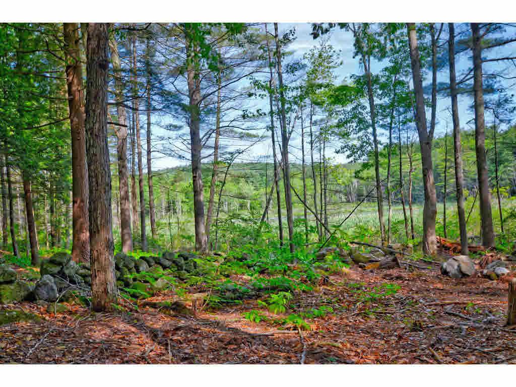 Land - Mont Vernon, NH (photo 3)