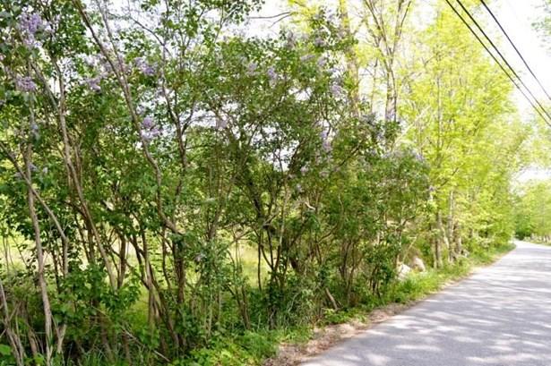 Land - Deering, NH (photo 4)