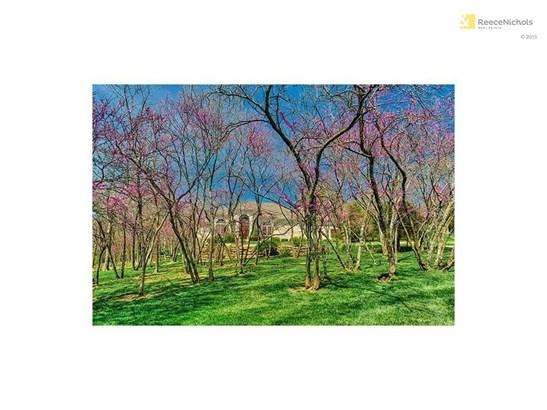 1521 Sw Trail Ridge Drive, Blue Springs, MO - USA (photo 4)