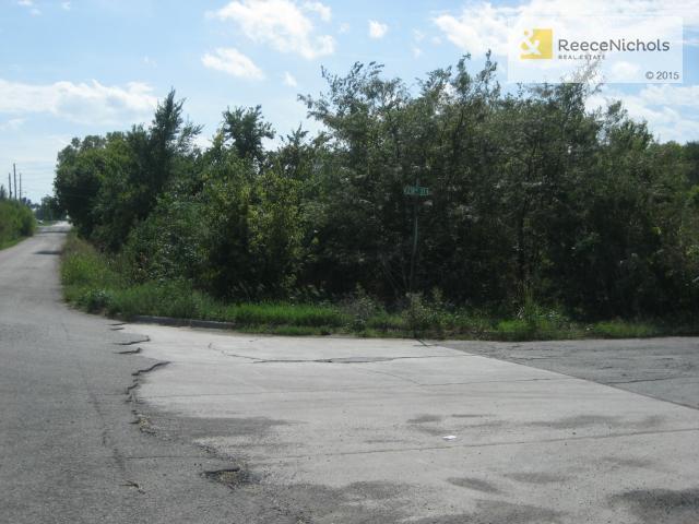 Tbd E Summerskill/n Main Road, Peculiar, MO - USA (photo 4)