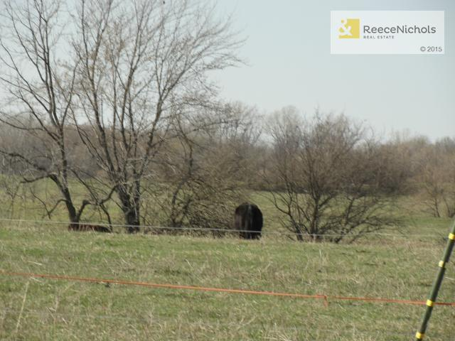 S Cowger Road, Peculiar, MO - USA (photo 5)