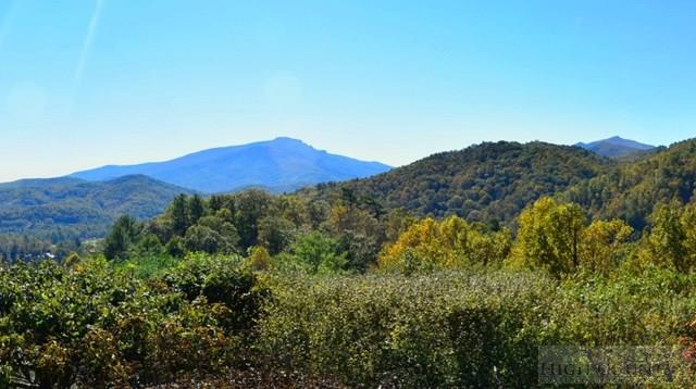 Mountain, Single Family - Boone, NC (photo 4)