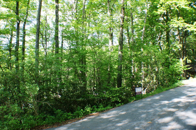 Subdivision - Blowing Rock, NC (photo 1)