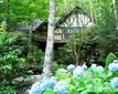 Chalet, Single Family - Boone, NC (photo 1)