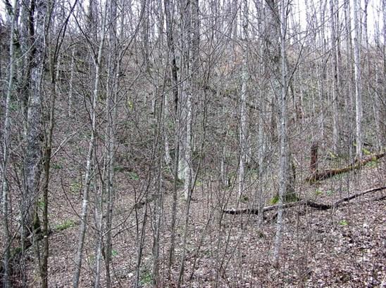 Subdivision - Zionville, NC (photo 1)
