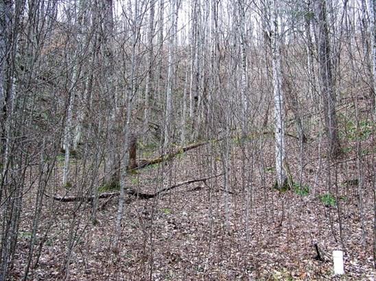 Subdivision - Zionville, NC (photo 2)