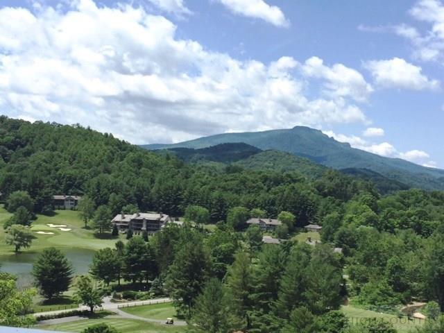 Mountain, Single Family - Boone, NC (photo 3)