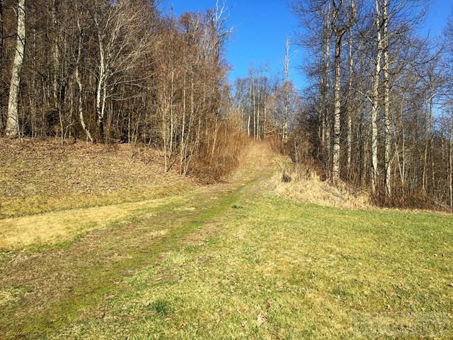 Subdivision - Todd, NC (photo 3)